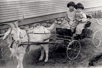 Elaine and Gene Recla 1917