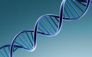 DNAhelix