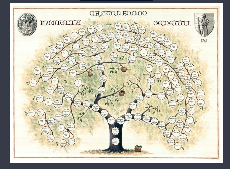 Shop – The Genetti Family Genealogy Project